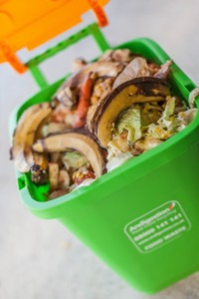 ANDIGESTION READY TO COLLECT ALL FOOD WASTE DURING THE BUSIEST TIME OF YEAR