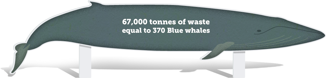 67,000 tonnes of waste is equal to 370 blue whales